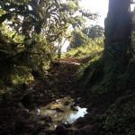 Mountain Terrain - Puddle
