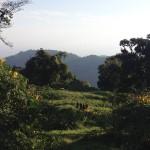 Mountain Terrain - Views